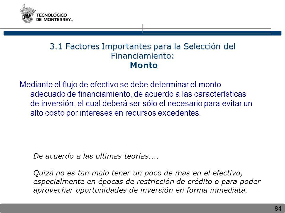 3.1 Factores Importantes para la Selección del Financiamiento: Monto