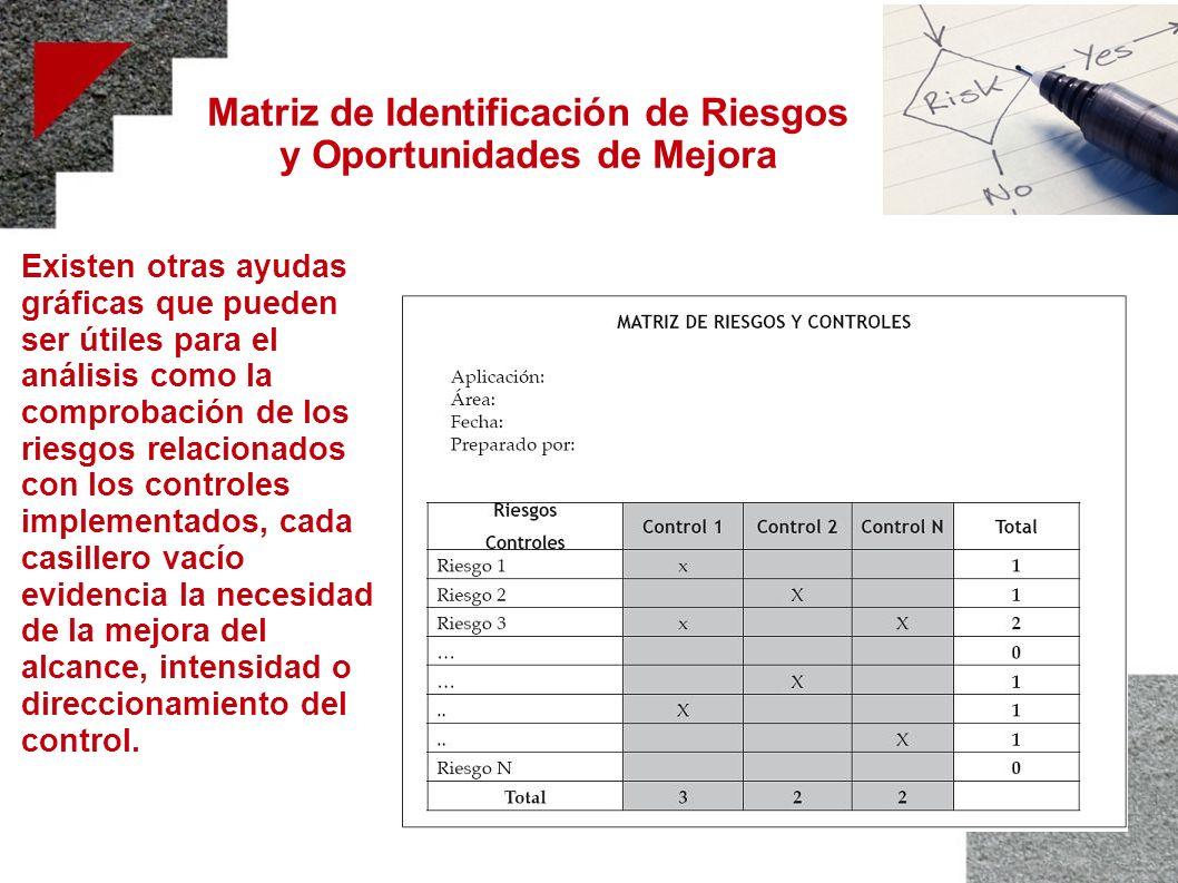 Matriz de Identificación de Riesgos y Oportunidades de Mejora