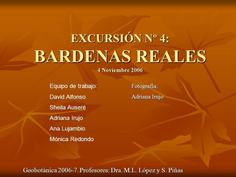 EXCURSIÓN Nº 4: BARDENAS REALES 4 Noviembre 2006