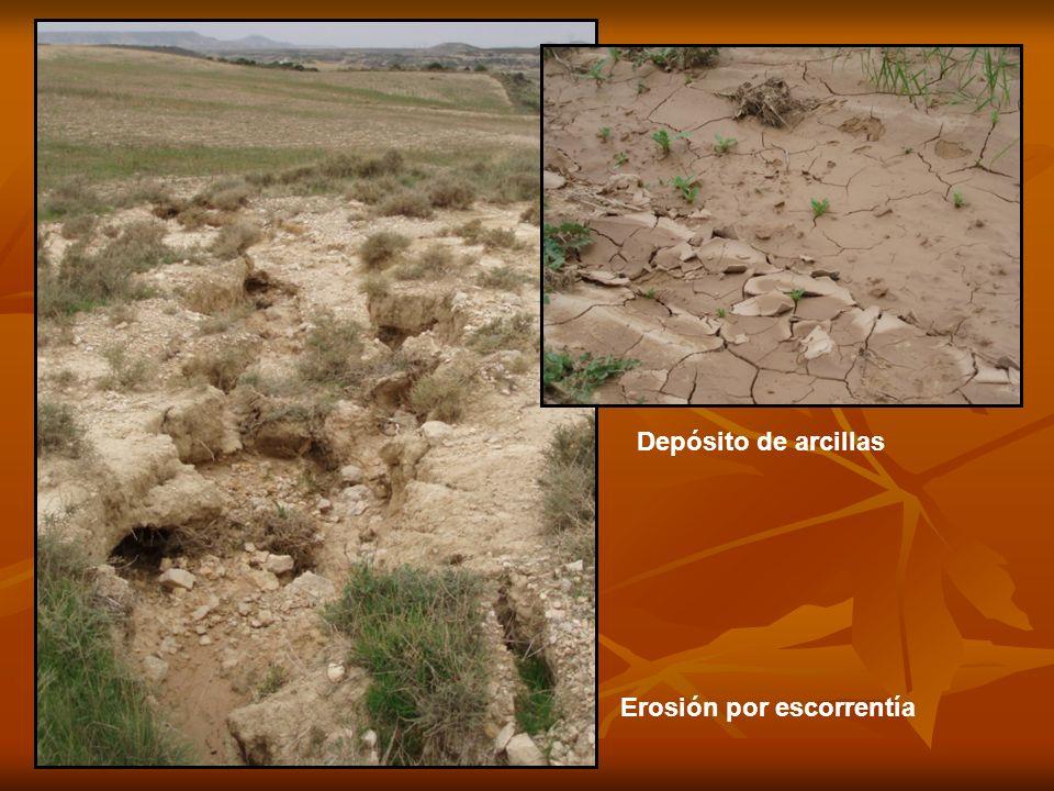 Depósito de arcillas Erosión por escorrentía