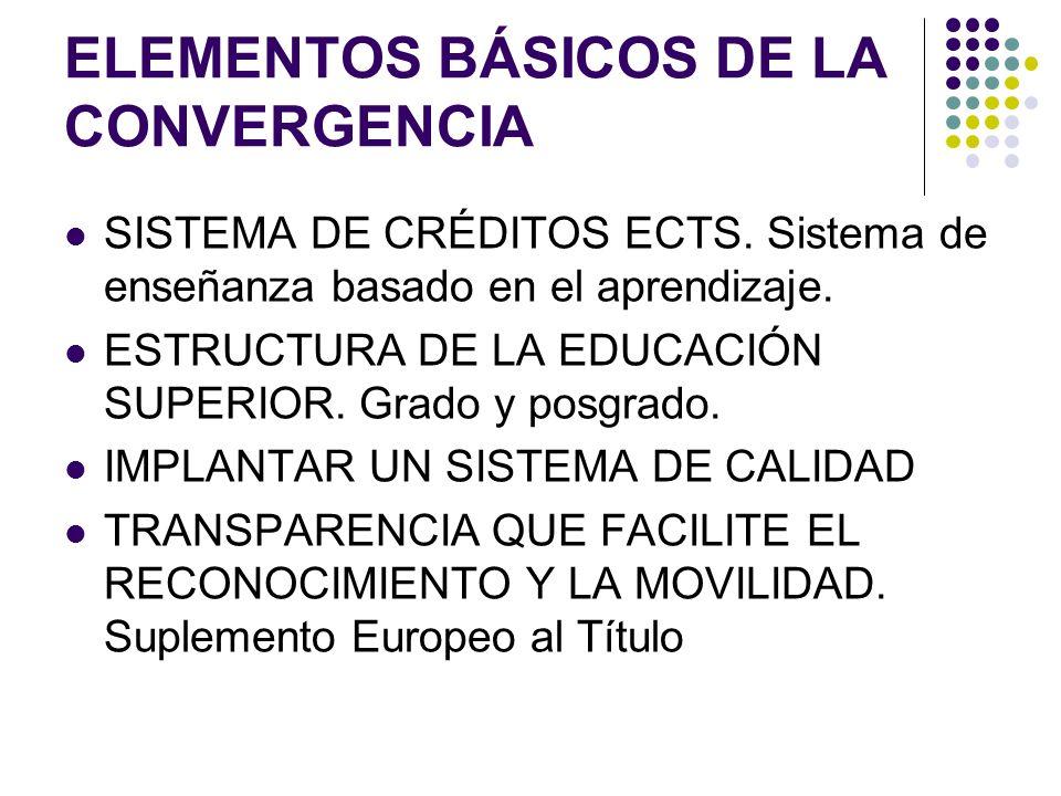 ELEMENTOS BÁSICOS DE LA CONVERGENCIA