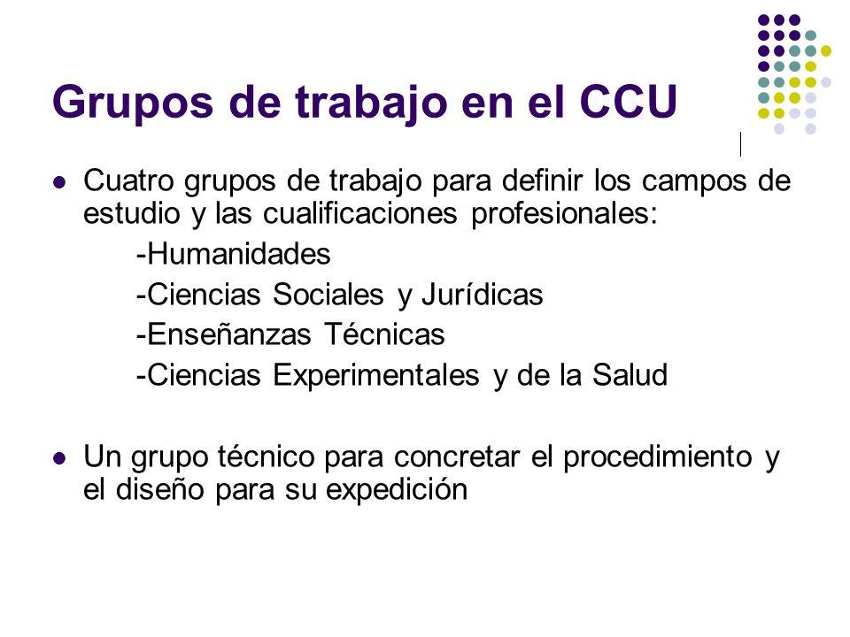 Grupos de trabajo en el CCU