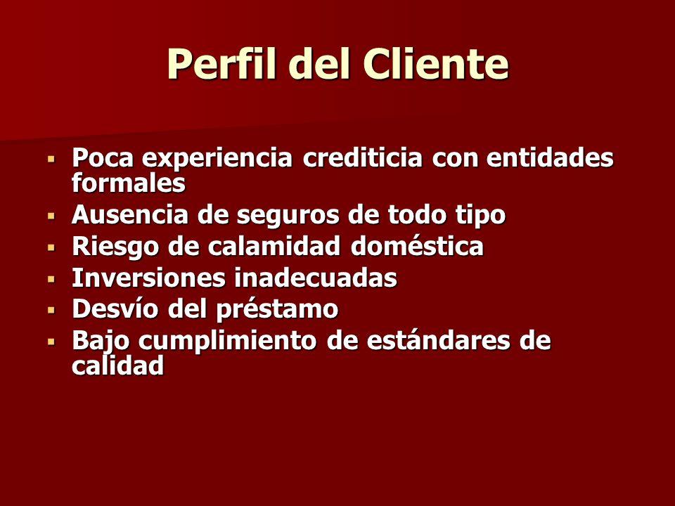 Perfil del Cliente Poca experiencia crediticia con entidades formales