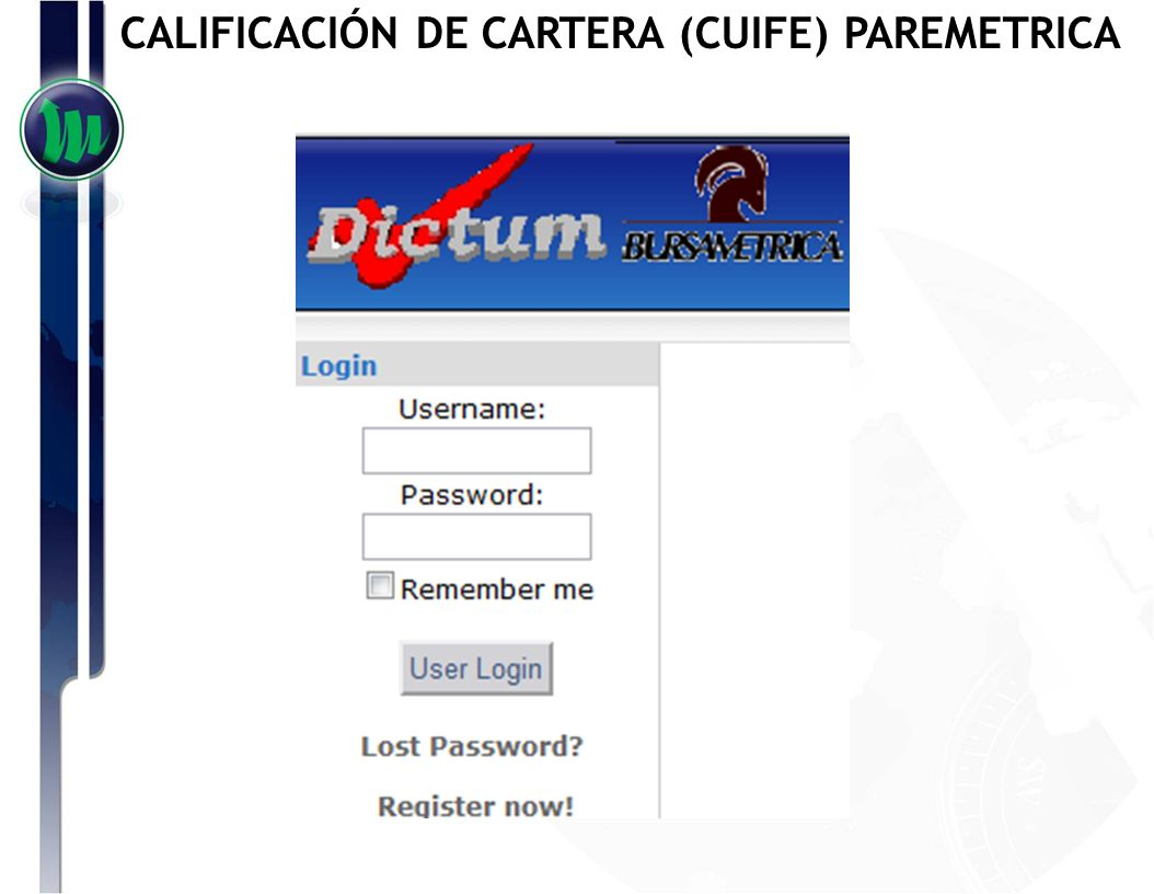 CALIFICACIÓN DE CARTERA (CUIFE) PAREMETRICA