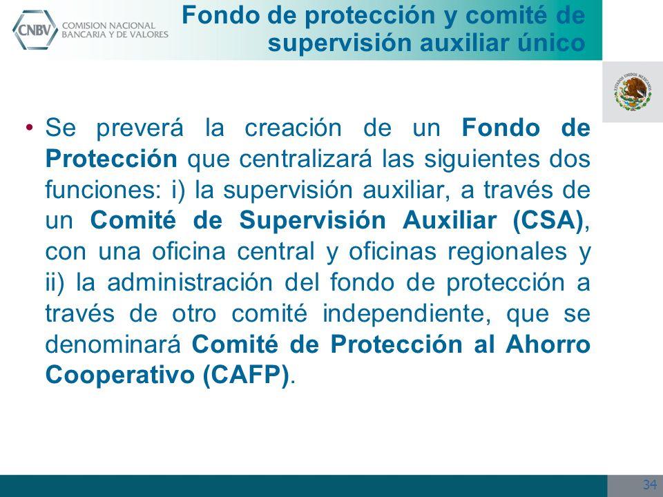 Fondo de protección y comité de supervisión auxiliar único