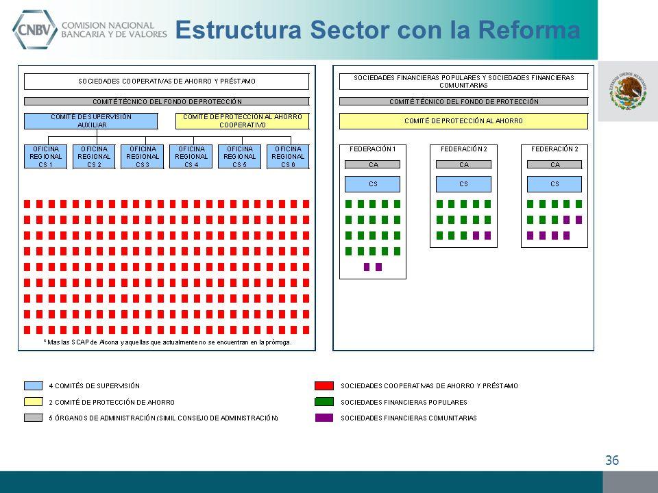 Estructura Sector con la Reforma