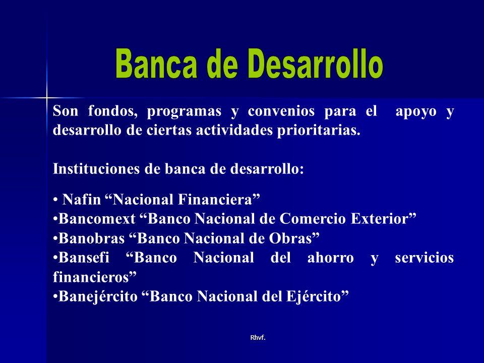 Banca de Desarrollo Son fondos, programas y convenios para el apoyo y desarrollo de ciertas actividades prioritarias.