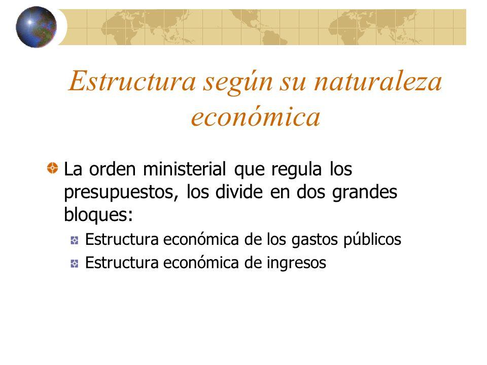 Estructura según su naturaleza económica