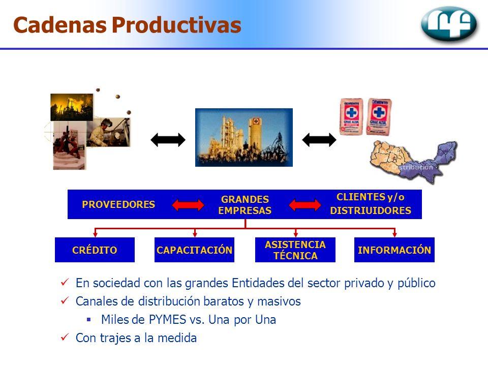Cadenas Productivas GRANDES. EMPRESAS. CLIENTES y/o. DISTRIUIDORES. PROVEEDORES. CRÉDITO. CAPACITACIÓN.