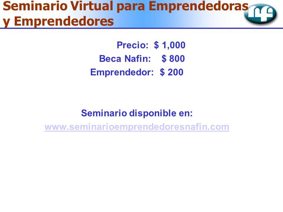 Seminario Virtual para Emprendedoras y Emprendedores