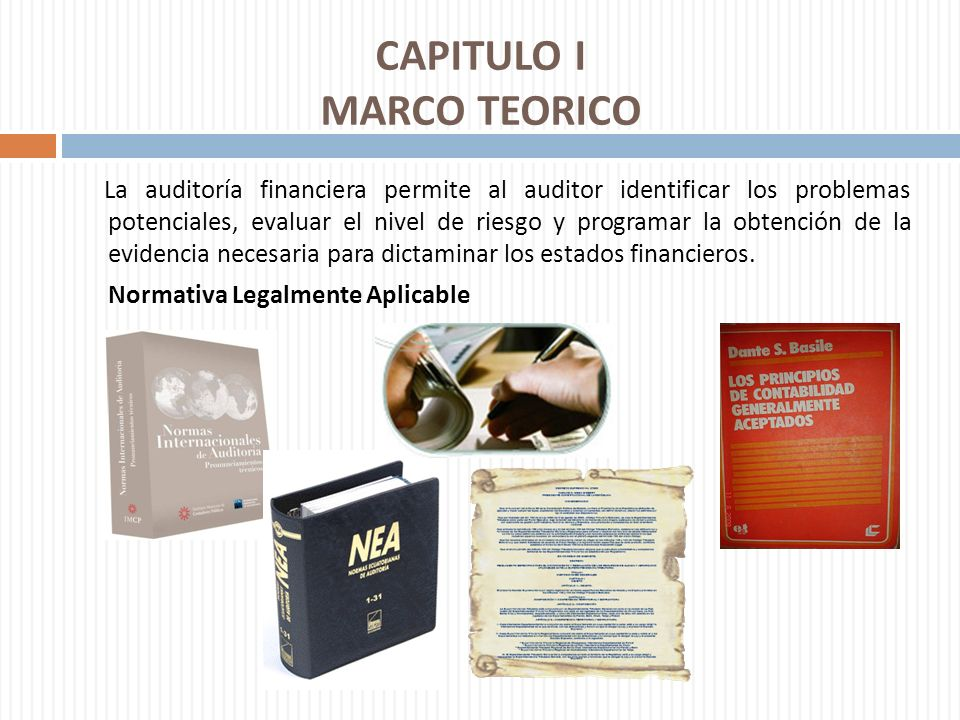 CAPITULO I MARCO TEORICO
