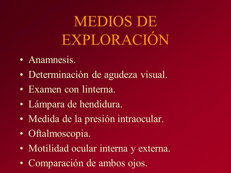 MEDIOS DE EXPLORACIÓN Anamnesis. Determinación de agudeza visual.