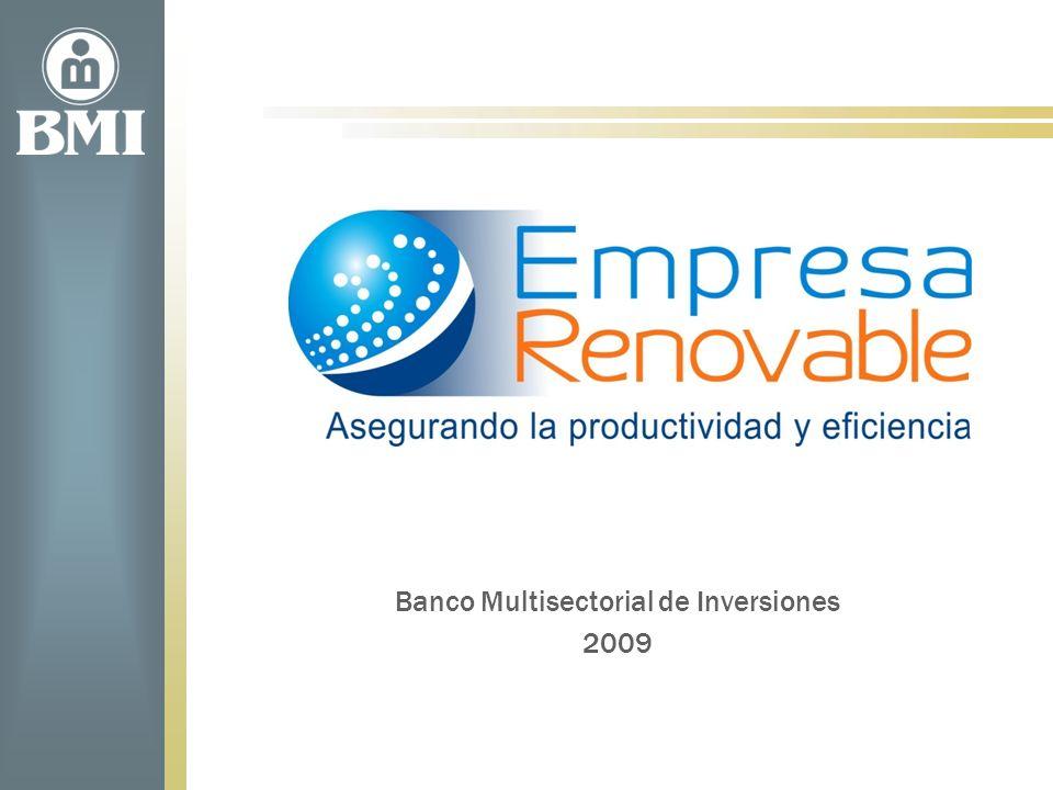 Banco Multisectorial de Inversiones 2009