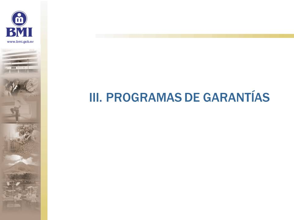 III. PROGRAMAS DE GARANTÍAS