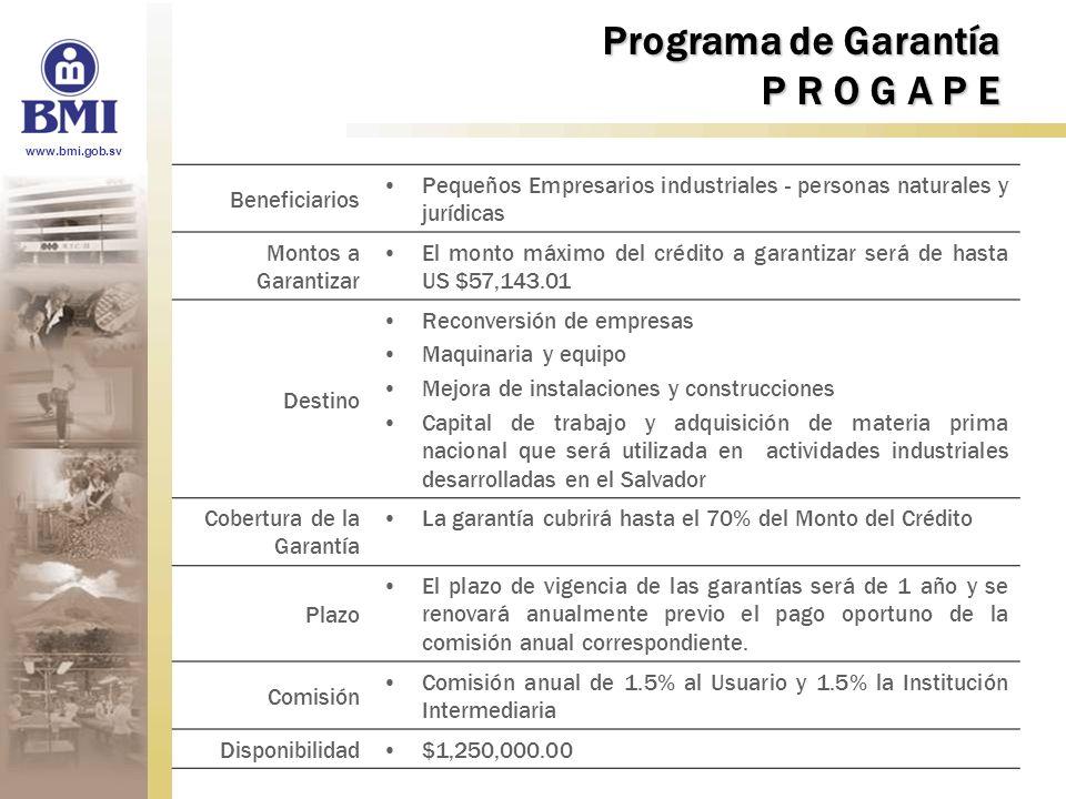 Programa de Garantía P R O G A P E