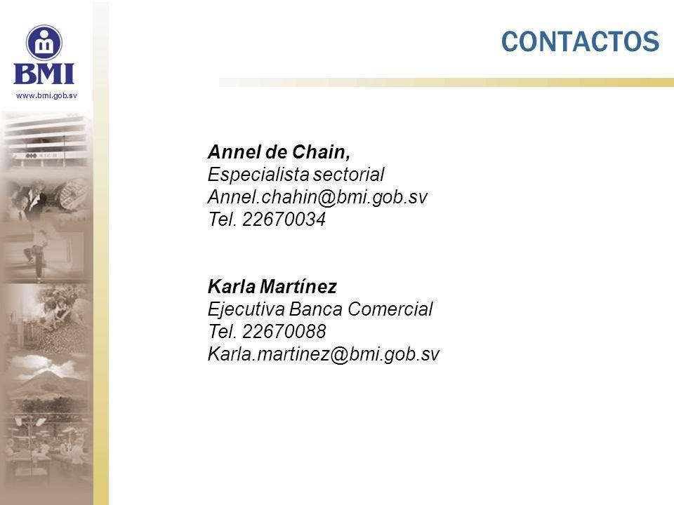 CONTACTOS Annel de Chain, Especialista sectorial