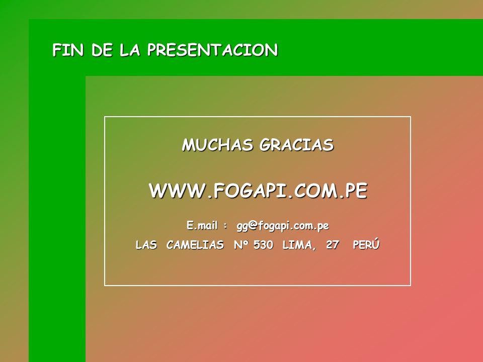 E.mail : gg@fogapi.com.pe LAS CAMELIAS Nº 530 LIMA, 27 PERÚ