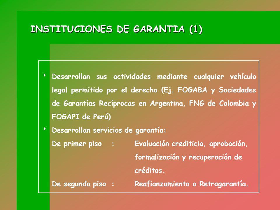 INSTITUCIONES DE GARANTIA (1)