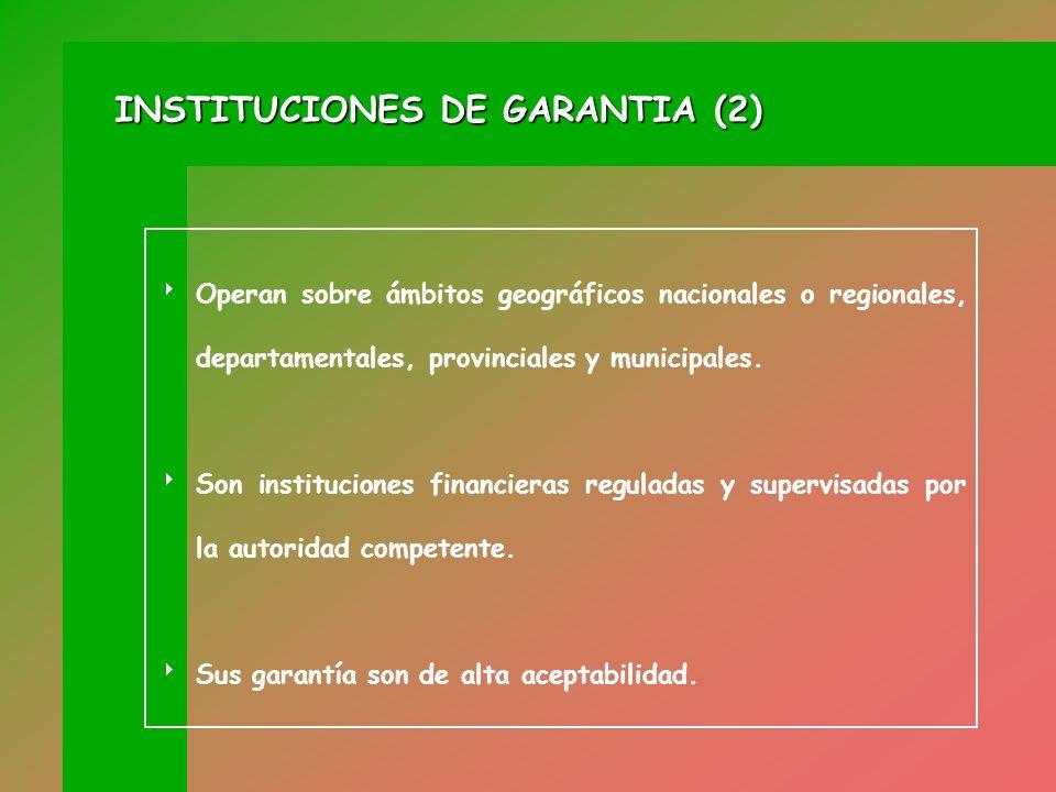 INSTITUCIONES DE GARANTIA (2)