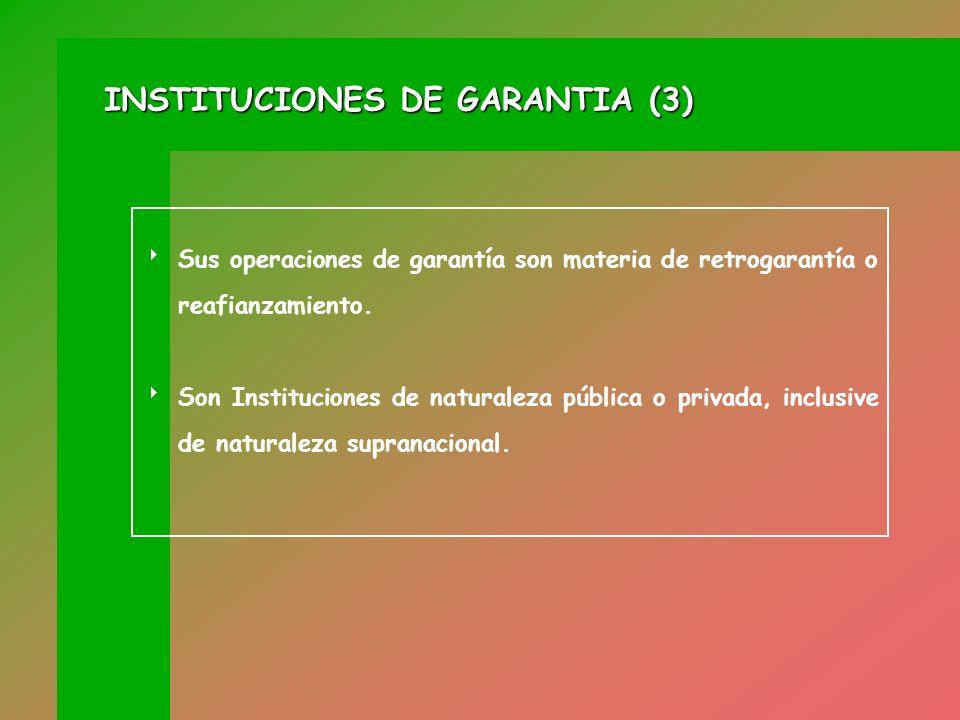 INSTITUCIONES DE GARANTIA (3)