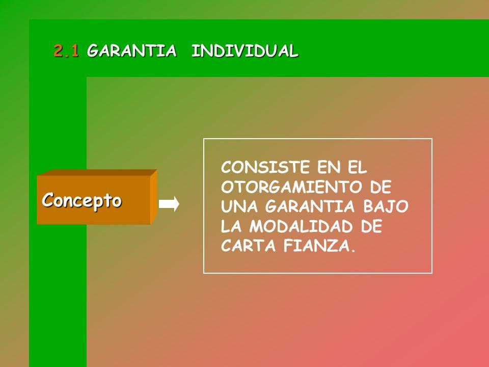 Concepto 2.1 GARANTIA INDIVIDUAL