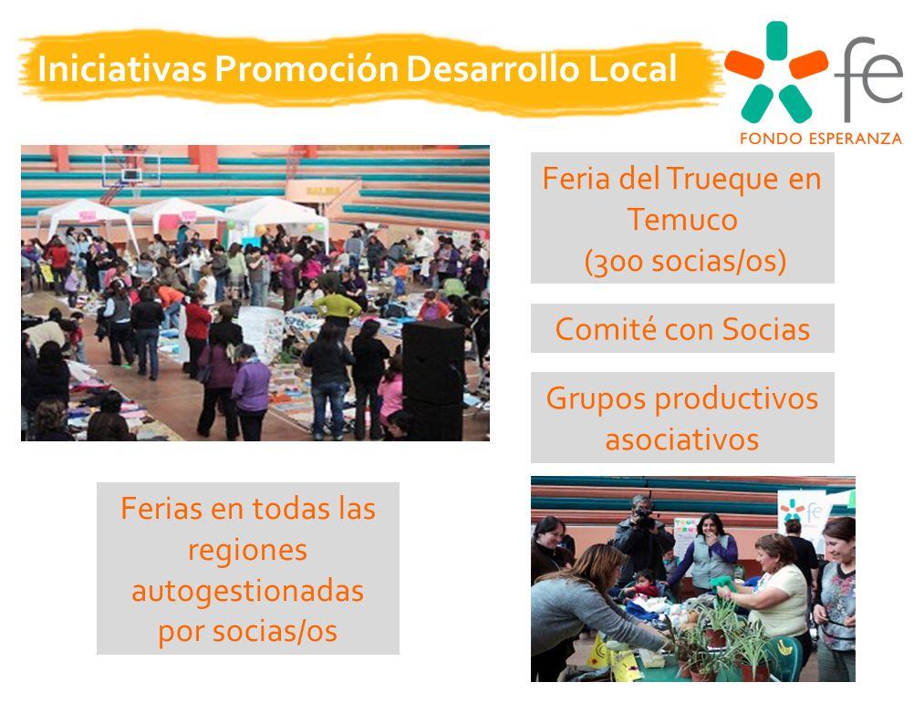 Iniciativas Promoción Desarrollo Local