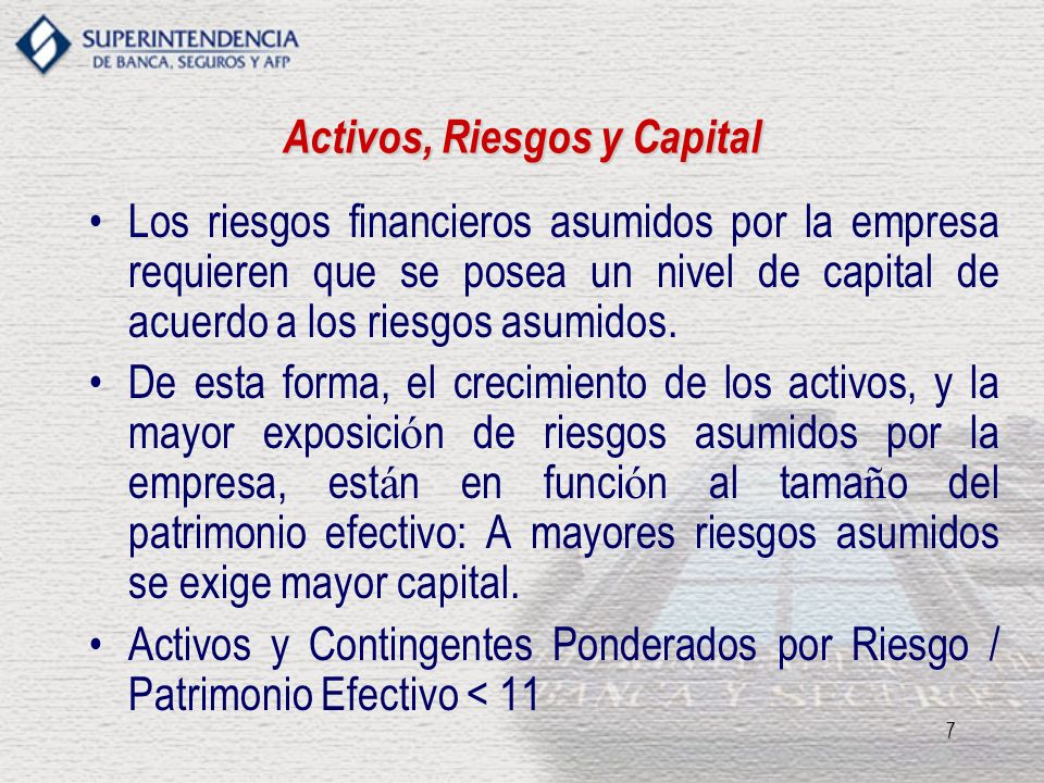 Activos, Riesgos y Capital