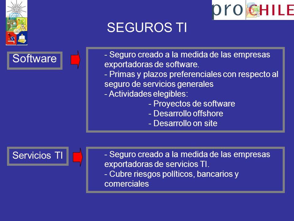 SEGUROS TI Software Servicios TI