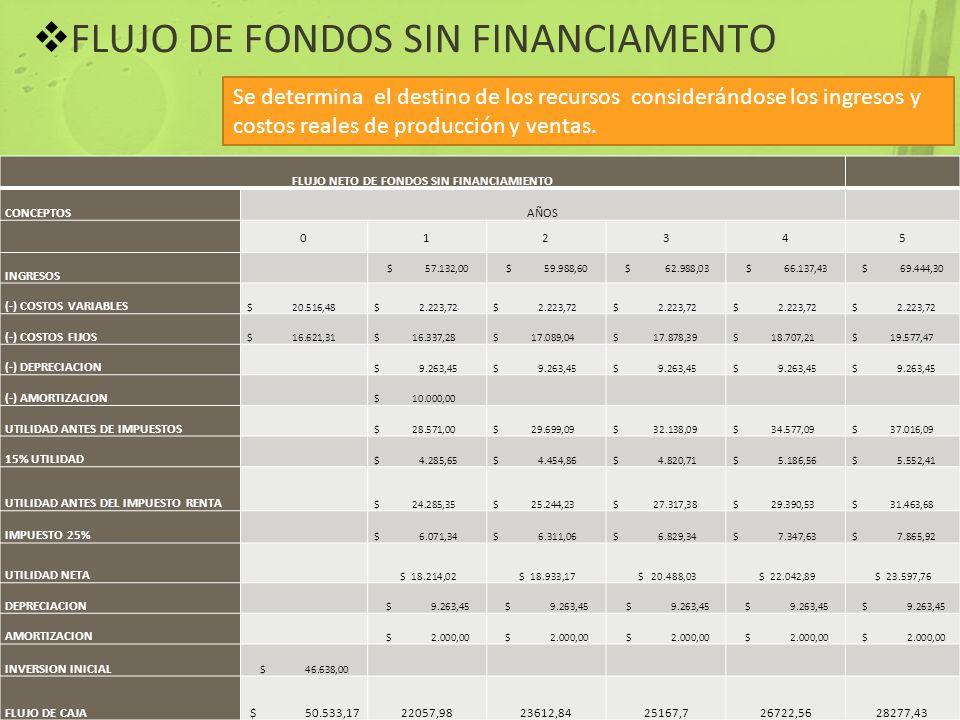 FLUJO NETO DE FONDOS SIN FINANCIAMIENTO