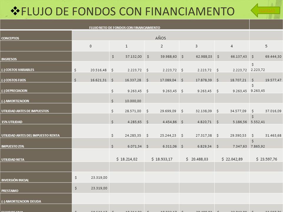 FLUJO NETO DE FONDOS CON FINANCIAMIENTO