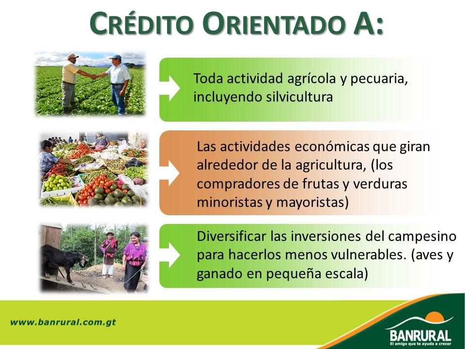 Crédito Orientado A: Toda actividad agrícola y pecuaria, incluyendo silvicultura.