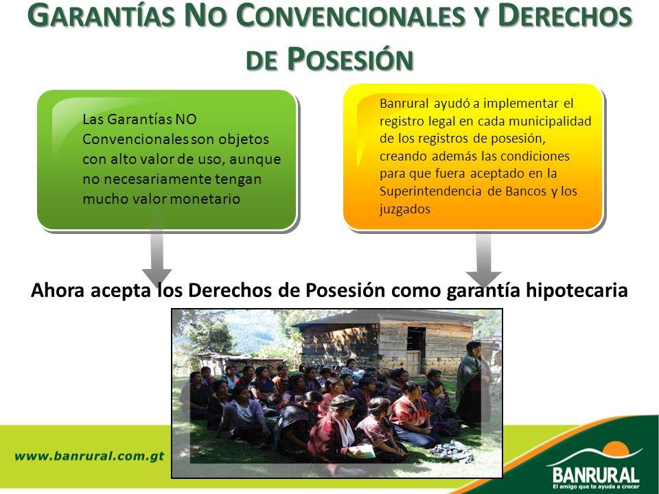 Garantías No Convencionales y Derechos de Posesión