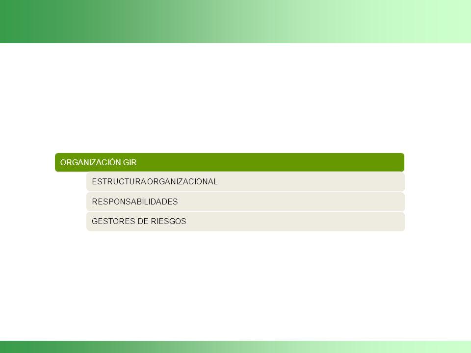 ORGANIZACIÓN GIR ESTRUCTURA ORGANIZACIONAL RESPONSABILIDADES GESTORES DE RIESGOS