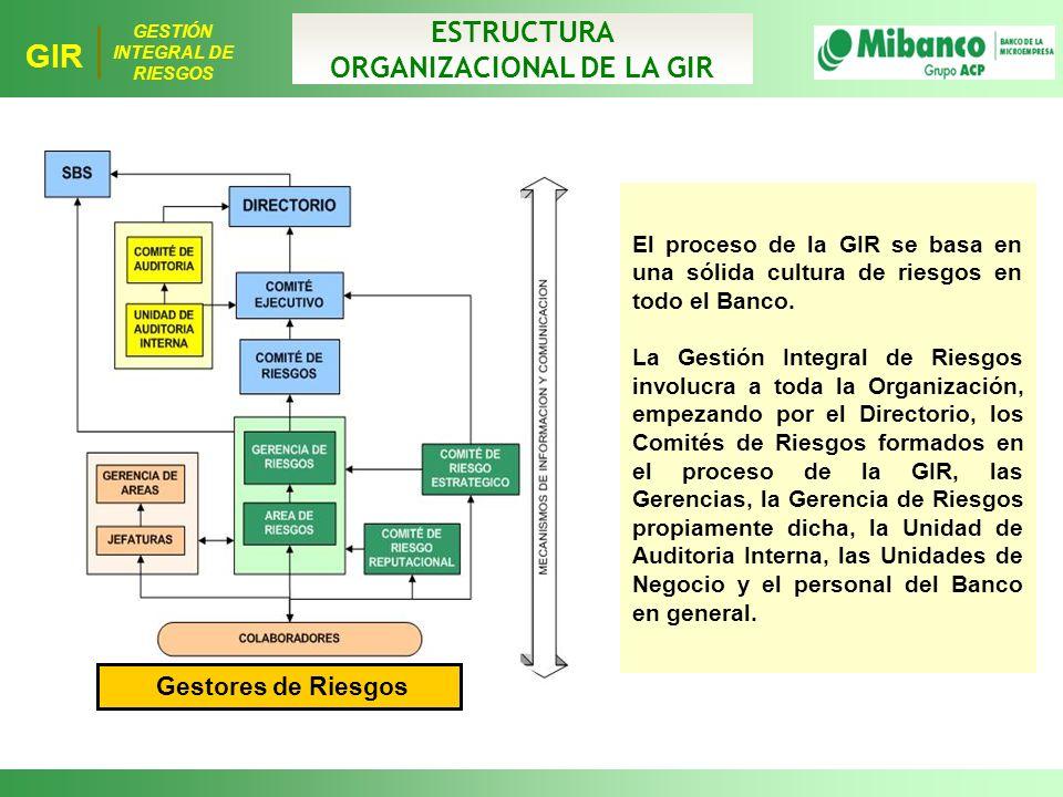 ORGANIZACIONAL DE LA GIR