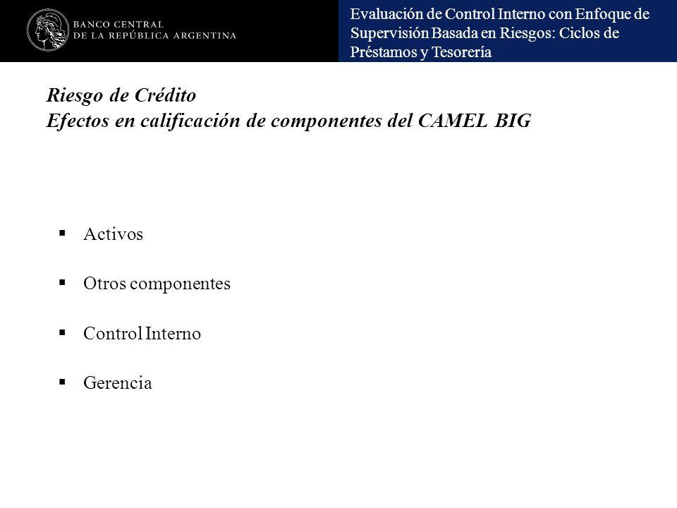 Riesgo de Crédito Efectos en calificación de componentes del CAMEL BIG