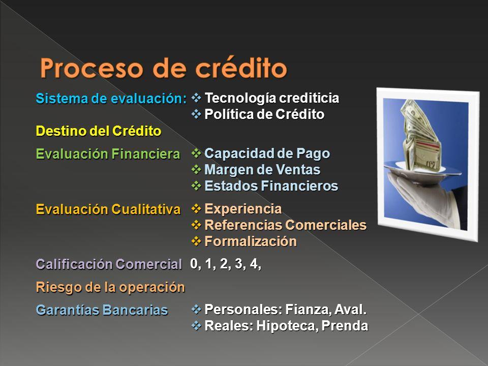 Proceso de crédito Sistema de evaluación: Tecnología crediticia