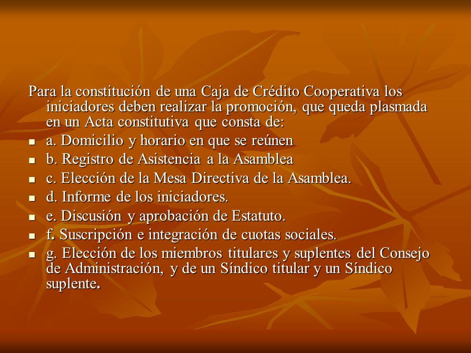Para la constitución de una Caja de Crédito Cooperativa los iniciadores deben realizar la promoción, que queda plasmada en un Acta constitutiva que consta de: