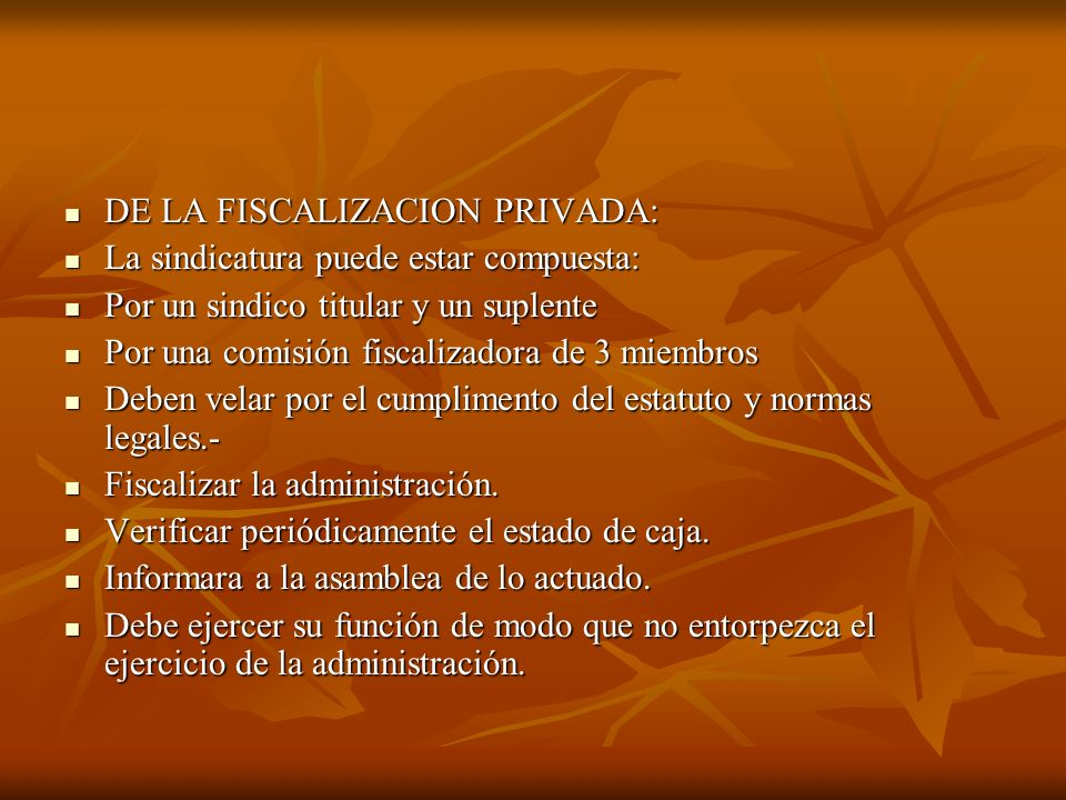DE LA FISCALIZACION PRIVADA: