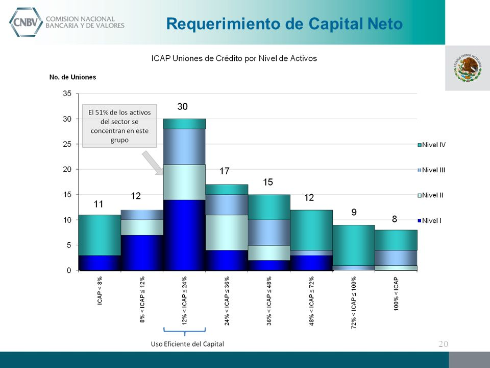 Requerimiento de Capital Neto