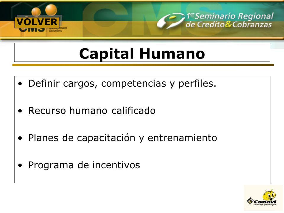 Capital Humano Definir cargos, competencias y perfiles.