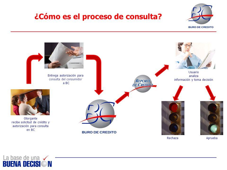 ¿Cómo es el proceso de consulta