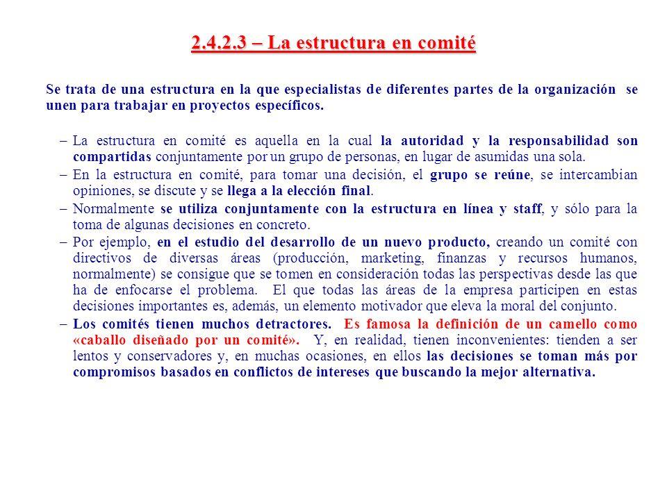 2.4.2.3 – La estructura en comité