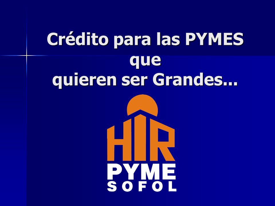 Crédito para las PYMES que quieren ser Grandes...