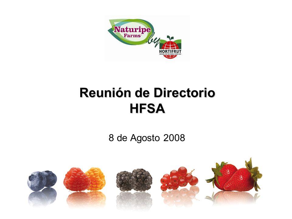 Reunión de Directorio HFSA