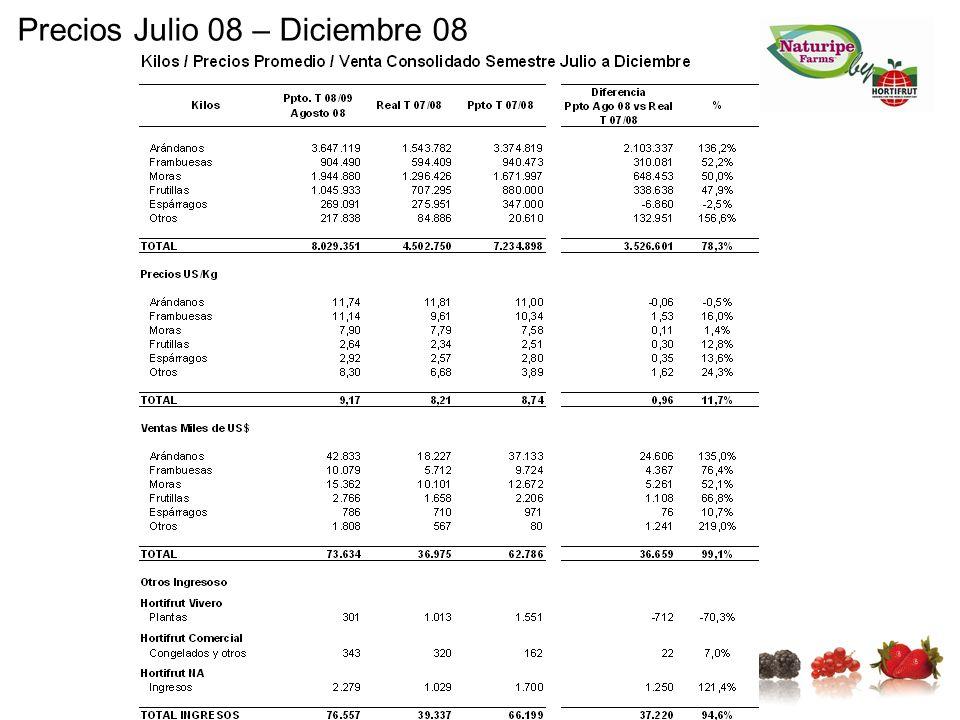 Precios Julio 08 – Diciembre 08