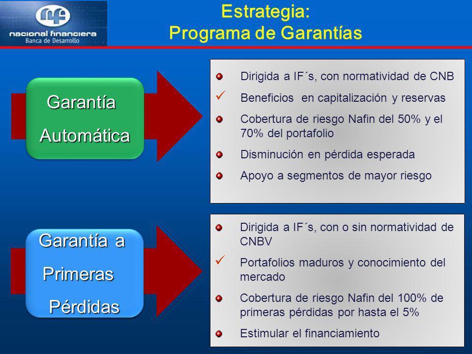 Estrategia: Programa de Garantías