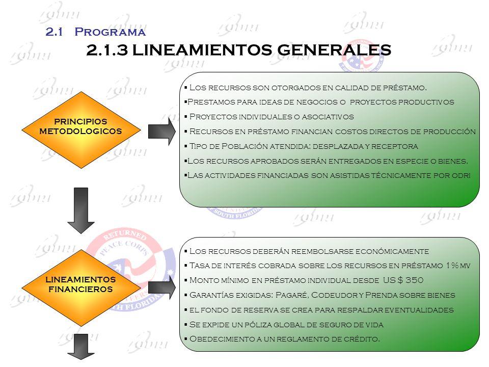 2.1.3 LINEAMIENTOS GENERALES