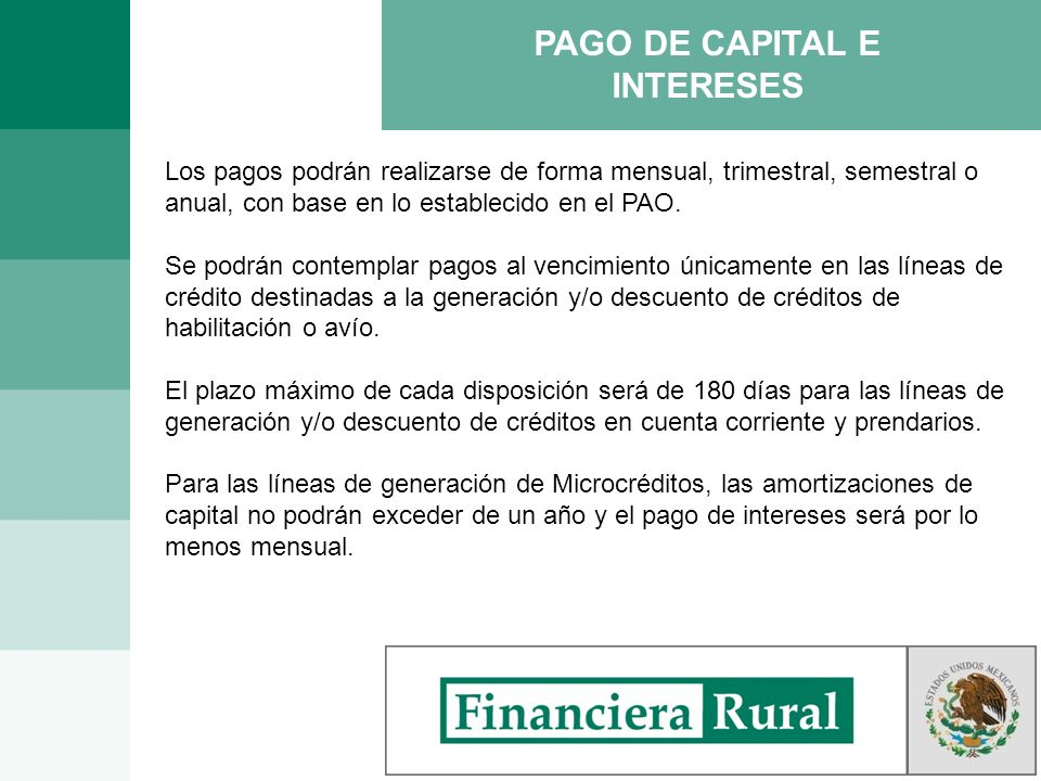 PAGO DE CAPITAL E INTERESES