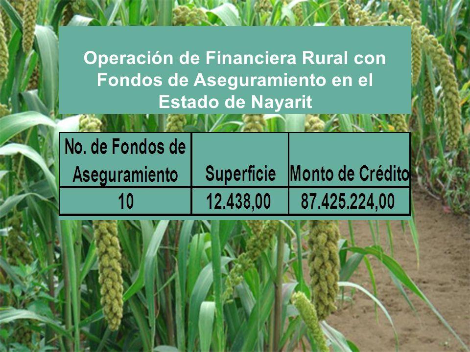 Operación de Financiera Rural con Fondos de Aseguramiento en el Estado de Nayarit