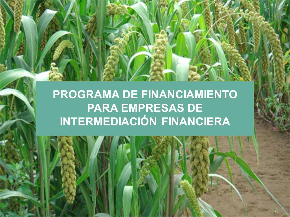 PROGRAMA DE FINANCIAMIENTO PARA EMPRESAS DE INTERMEDIACIÓN FINANCIERA
